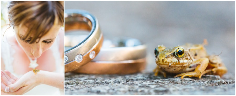 Hochzeit mit einem Frosch