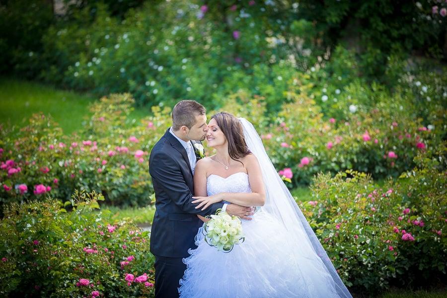 49 Mainau heiraten