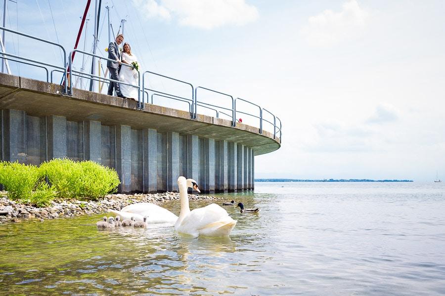 Hochzeit am See in Friedrichshafen