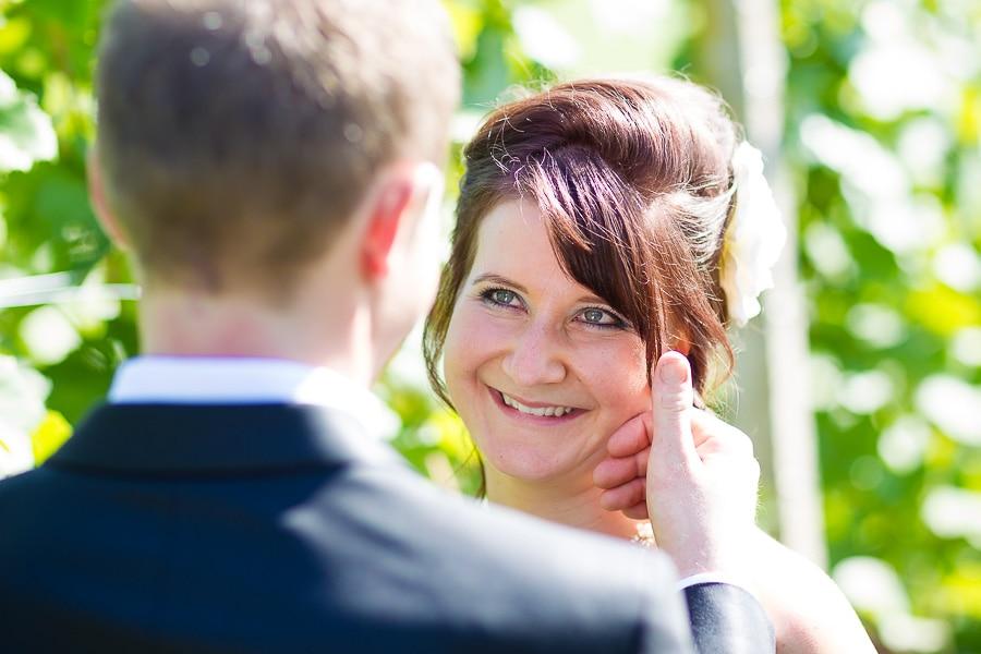 Romantische Weinberge mit Brautpaar