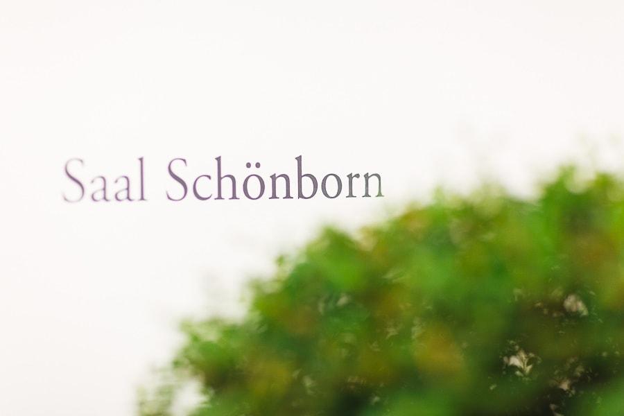 Saal Schönborn