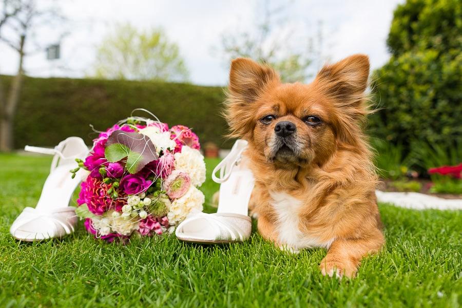 Hochzeit Hochzeitsfeier im GZH