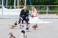 Enten Hochzeitspaar