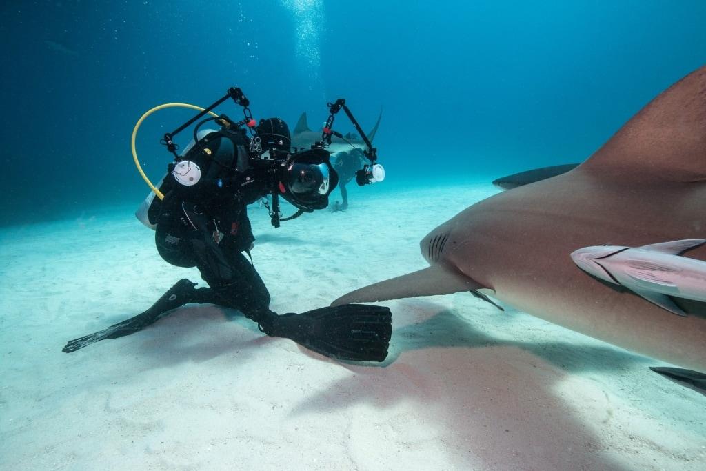 unterwasserfotograf-nauticam-fotograf